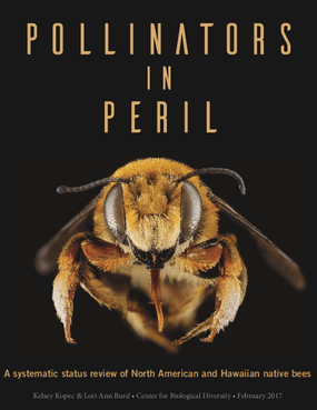Pollinators In Peril: A Systematic Status Review of North American and Hawaiian Native Bees